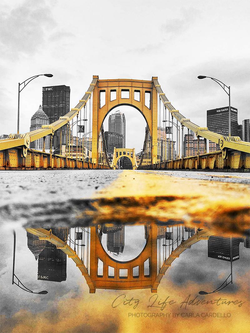 Black-and-Gold-Rachel-Carson-Bridge-Reflection-by-Carla-Cardello-portfolio