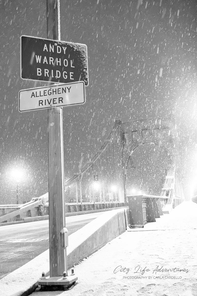 Snowy-Andy-Warhol-Bridge-by-Carla-Cardello-portfolio